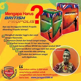 Jual British Propolis Indramayu, Cirebon, Majalengka, Subang