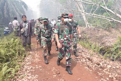 Panglima TNI Didampingi Pangdam Tinjau Karhutla
