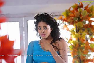 Sushma Raj Sexy Navel Boobs Dangerously Low Rise Chiffon Saree Hot Choli horny mood