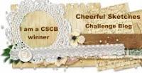 I AM A CSCB WINNER