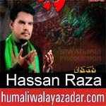 https://www.humaliwalyazadar.com/2018/09/hassan-raza-nohay-2019.html