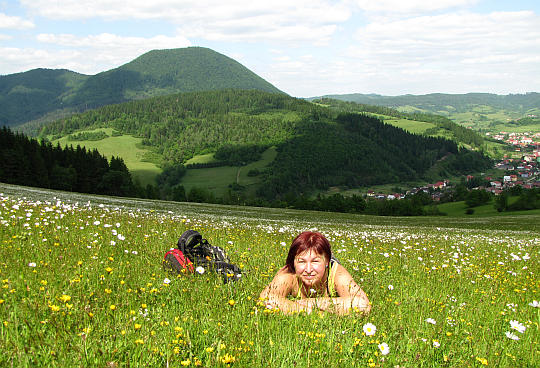 Zielone łąki, obficie obsypane kwiatami.