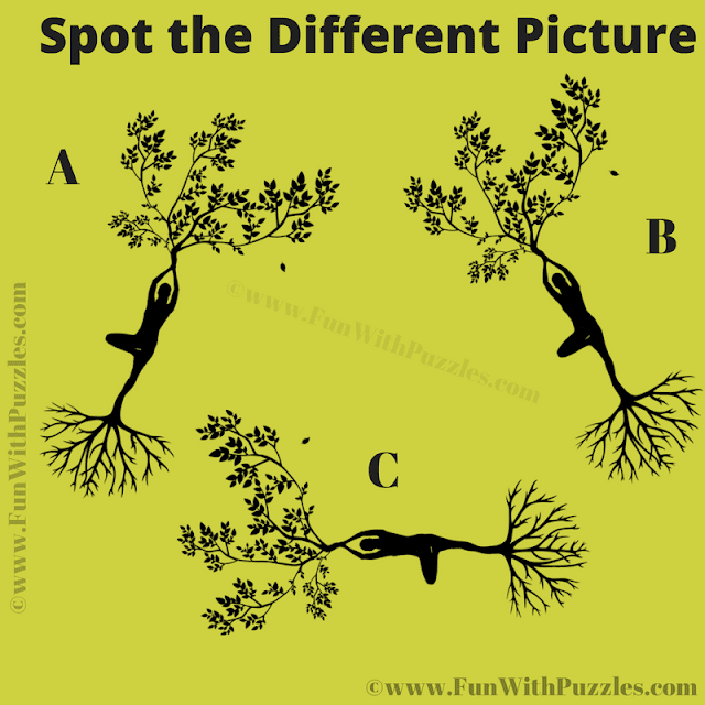 It is Visual Riddle in which your challenge is to spot the different image among three similar looking images.