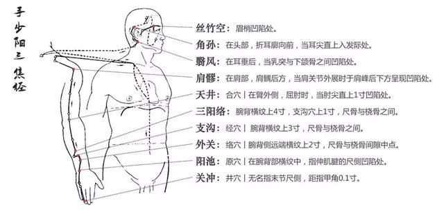 三焦經,人體軀幹上的雙向八車道,重在打通中焦(通氣血)
