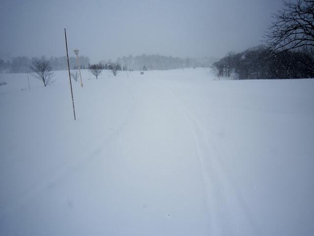 スキー場脇