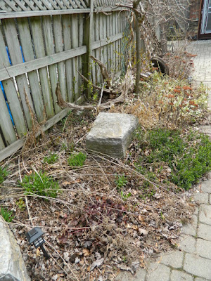 Paul Jung Gardening Services a Toronto Gardening Company Parkdale Spring Garden Cleanup Before