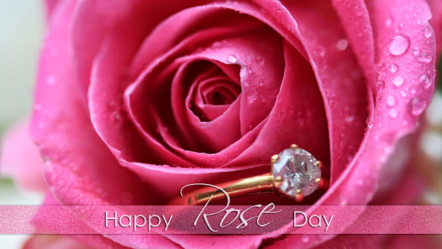 Cute Rose  Day Images Pics HD