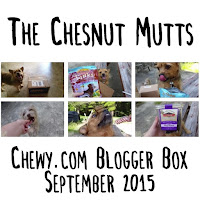 The Chesnut Mutts Chewy.com Blogger Box September 2015