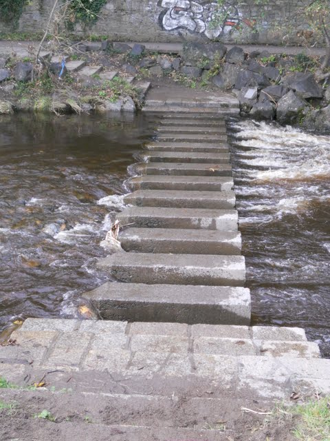 Walk the River Dodder in Dublin - steps across the river