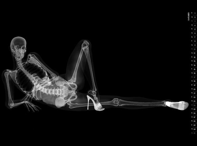 Eizo nude X-ray calender 2010 october