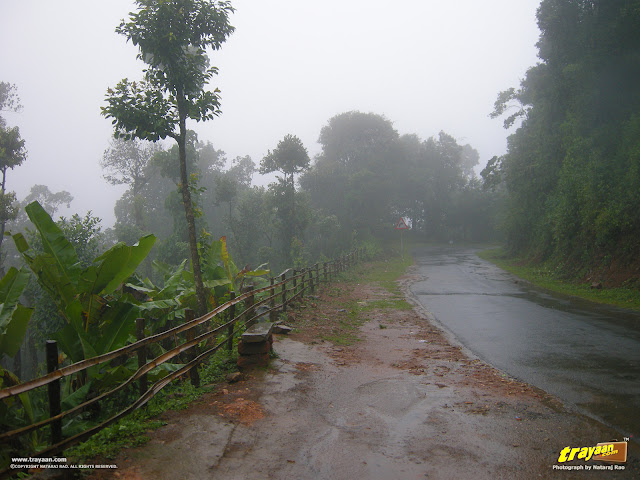 A rainy day at Coorg, Kodagu, Karnataka, India
