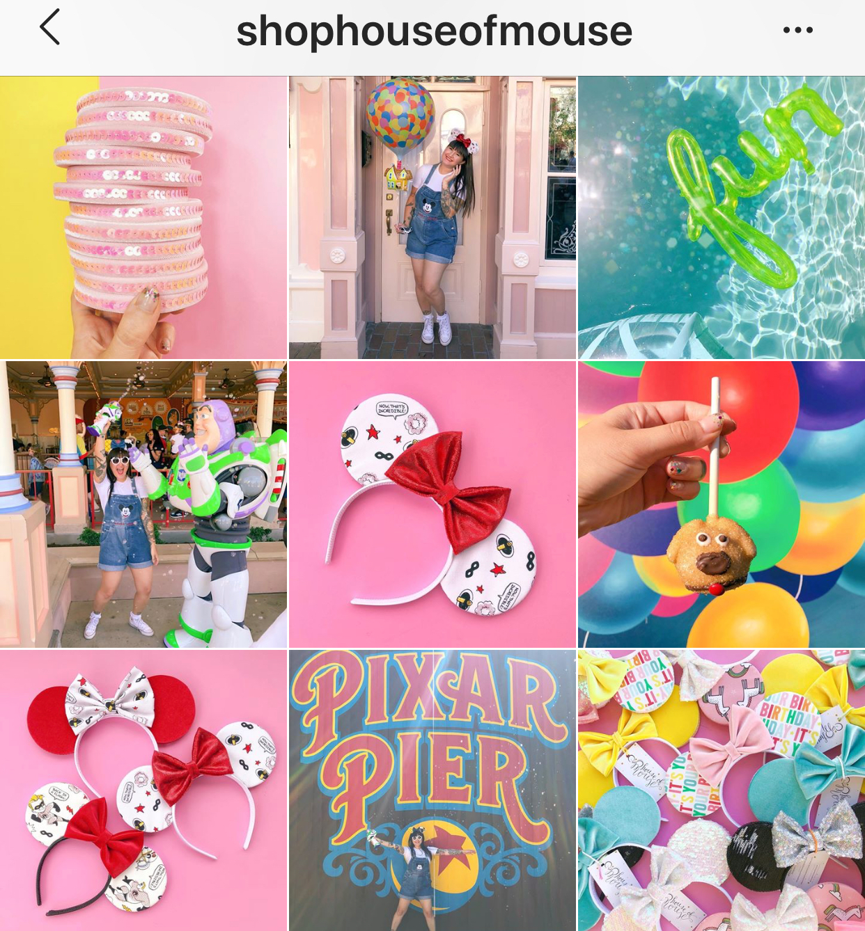 Shop House of Mouse Instagram