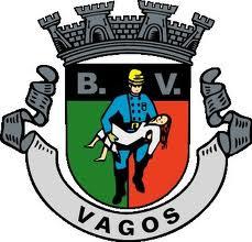 Resultado de imagem para BOMBEIROS VOLUNTÁRIOS DE VAGOS