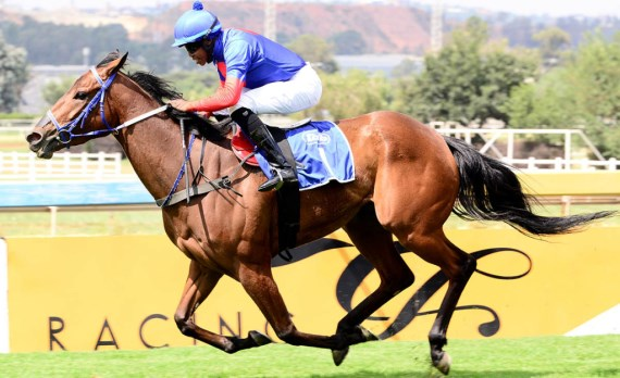 Trophy Wife - Vodacom Durban July - Sean Tarry