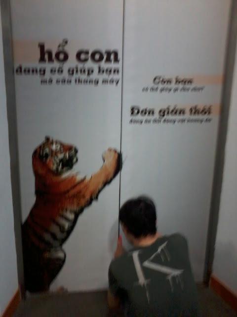 dán poster