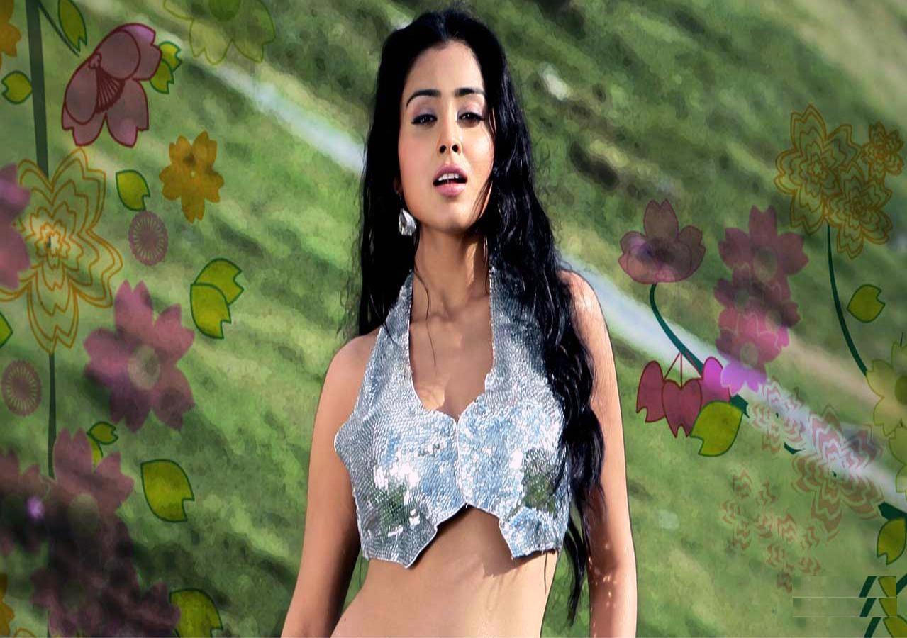 Shriya Saran HD Photos -4