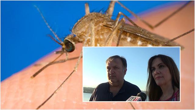 Δηλώσεις Χειβιδόπουλου και Παναγιωτοπούλου για τον ιό του Δυτικού Νείλου στην Αργολίδα (βίντεο|)