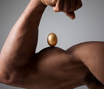 More Eggs more Muscles