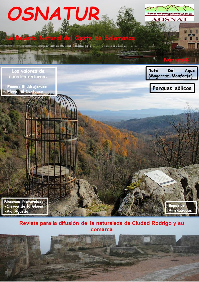 Revista Osnatur Nº 8