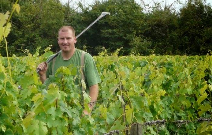 LACN - voyage - bourgueil - laurent herlin - vigneron - bio