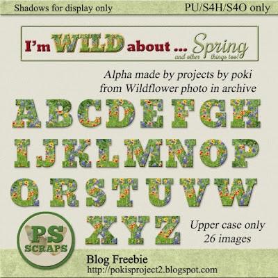 REPRISE: WILD about SPRING