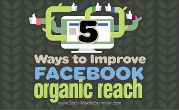 社群小編看過來!讓Facebook自然觸及人數停止下滑的五個秘訣