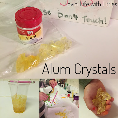Alum Crystals Science Experiment
