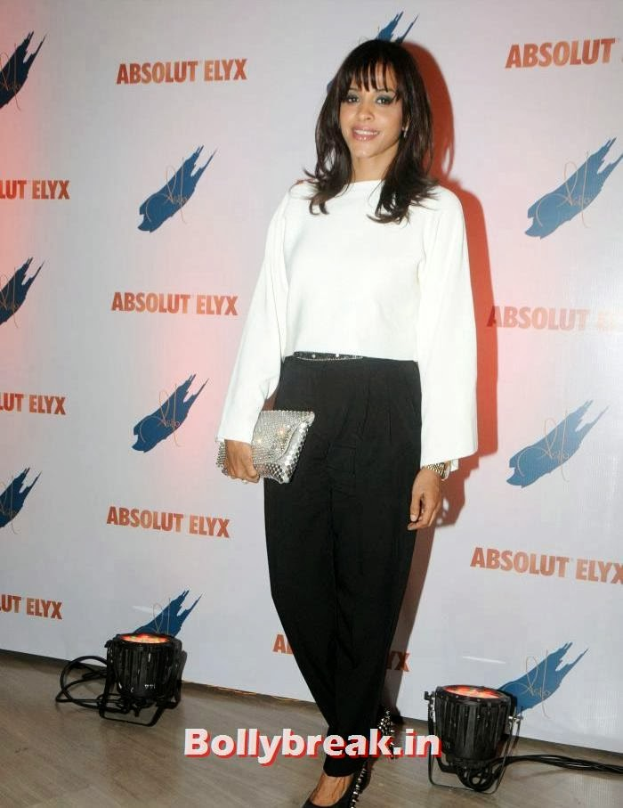 Manasi Scott, Suchitra Pillai Hosted Absolute Elyx Party