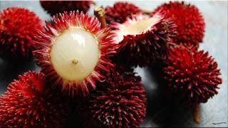 gambar buah kapulasan