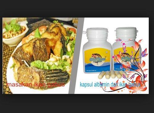 Manfaat Ikan Gabus