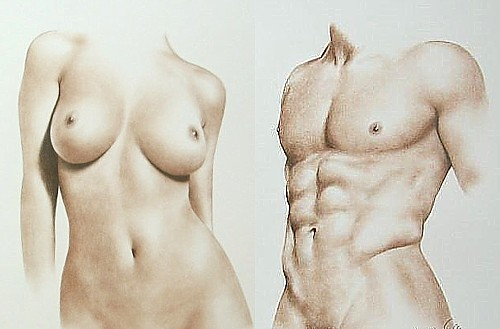 Art Now And Then Drawing Torsos-2995