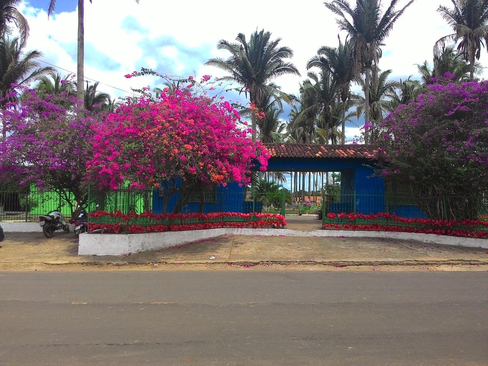Resultado de imagem para fotos arquivo da cidade de Pinheiro-MA