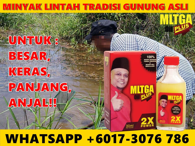 lintah oil sofifi jualpembesarpenisasli com agen resmi vimax