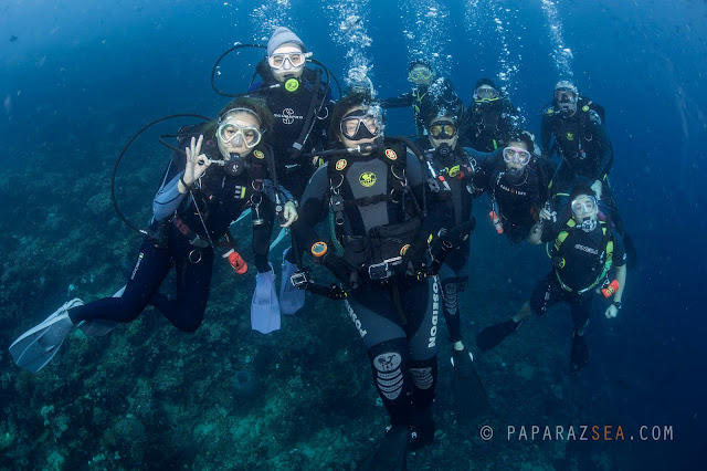 Underwater Photography, Learn Diving, Philippines, PaparazSea, Scuba Diving Center
