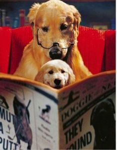 Southern Writers - Suite T: Raining Cats and Dogs: Writing Pets in Books