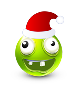 Christmas Smiley Icon 24
