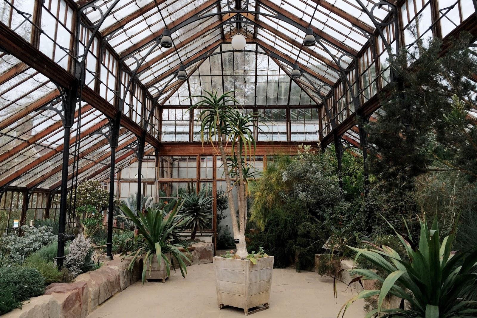 Early Spring In The Cambridge University Botanic Garden In