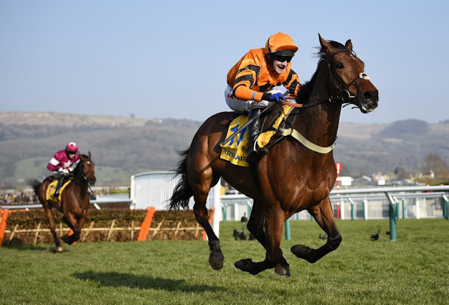 Cheltenham Festival 2016 in Pictures - Thistlecrack wins the World Hurdle