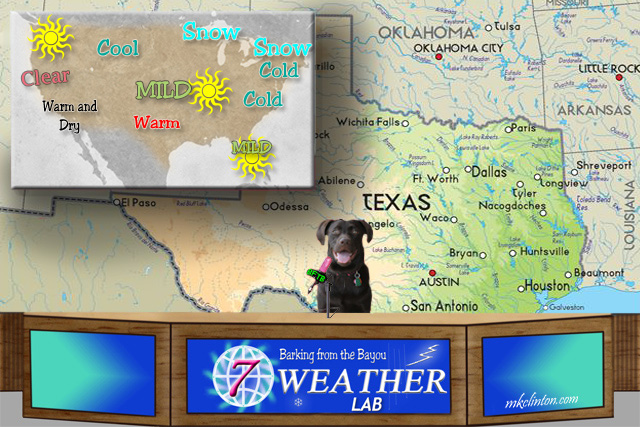 Paisley the Weather Lab's forecast