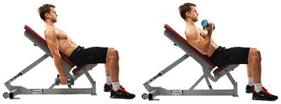 incline seated dumbbell curl for biceps
