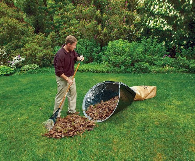 Yard Cleaning Tools and Gadgets (10) 4