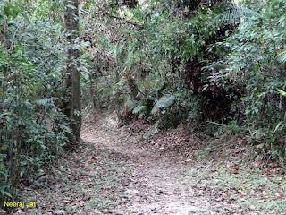 अंडमान में बाइक यात्रा: माउंट हैरियट नेशनल पार्क