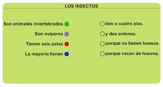 http://primerodecarlos.com/SEGUNDO_PRIMARIA/diciembre/Unidad5/actividades/cono/insectos.swf