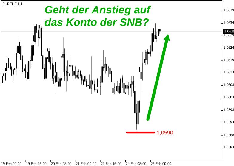 Kerzenchart EUR/CHF-Kurs 19. Feb. bis 25. Feb. 2020 mit mutmaßlicher Devisenintervention der Schweizerischen Nationalbank