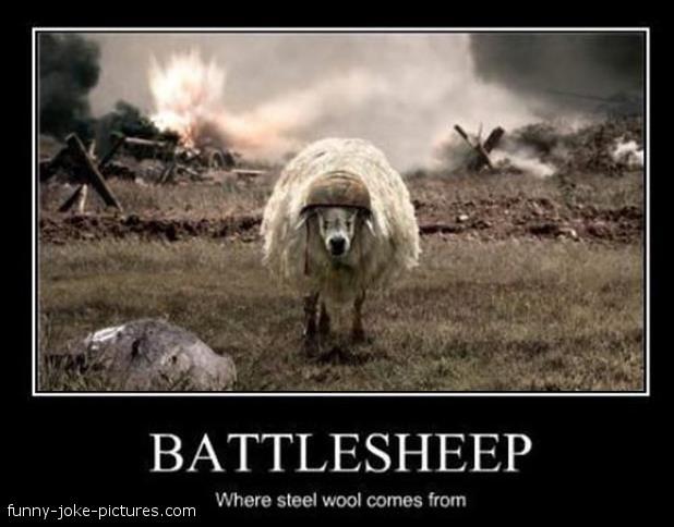 Funny sheep jokes - photo#52