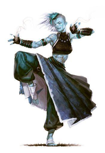 Snake's Venom: Skydancer (Air Genasi Monk)