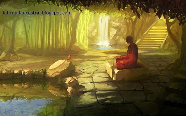 Meditación de la Visión Penetrante