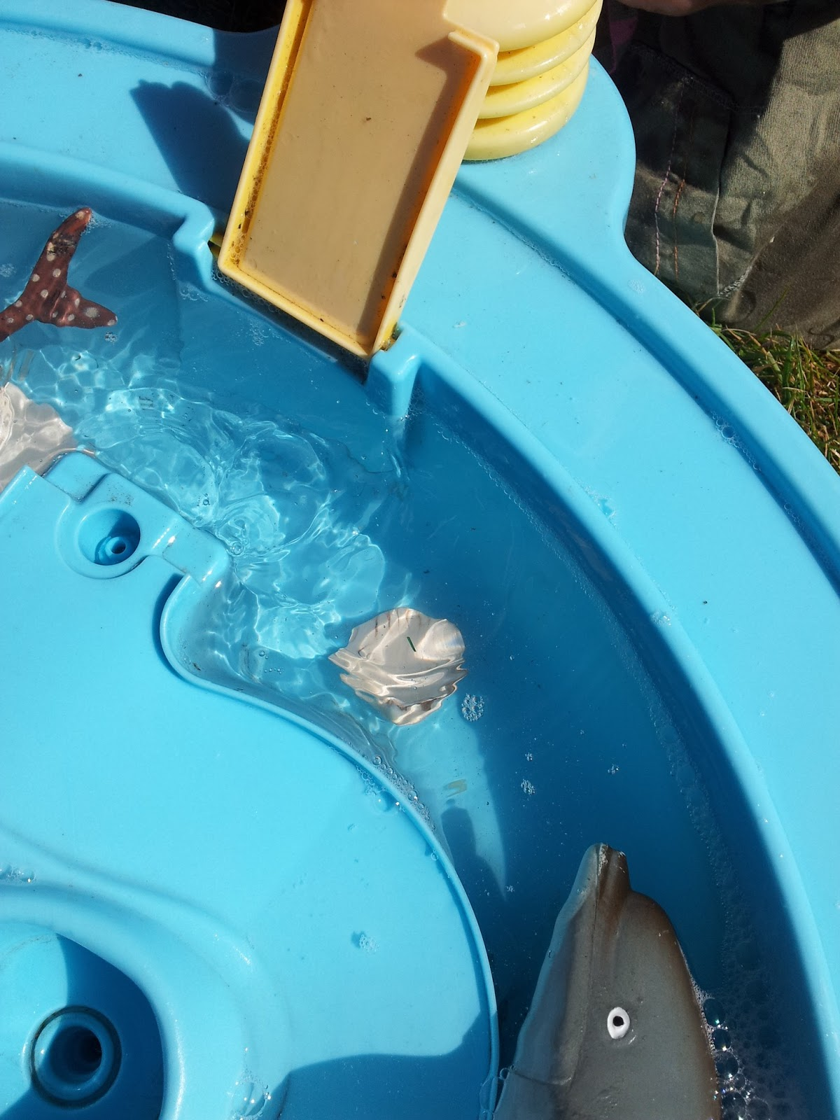 Matilda Mae's Messy Play Water Table Seaside Animals sink float