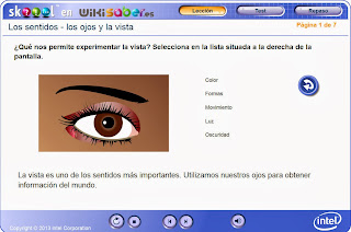 http://www.skoool.es/content/science/eyes_and_seeing/index.html