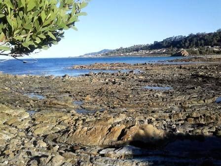 Robbiebago Adventures: We've arrived in Tasmania